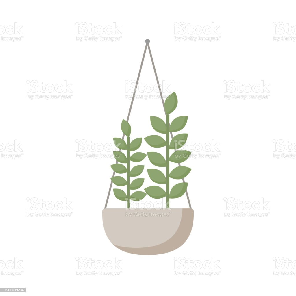 Illustration Of A Flat Hanging Pot With Green Plant Isolated On A White Background Stock Illustration Download Image Now Istock