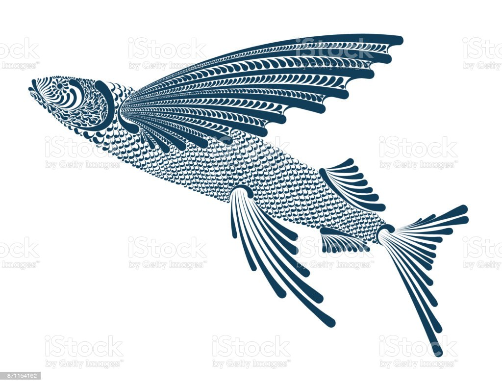royalty free flying fish clip art vector images