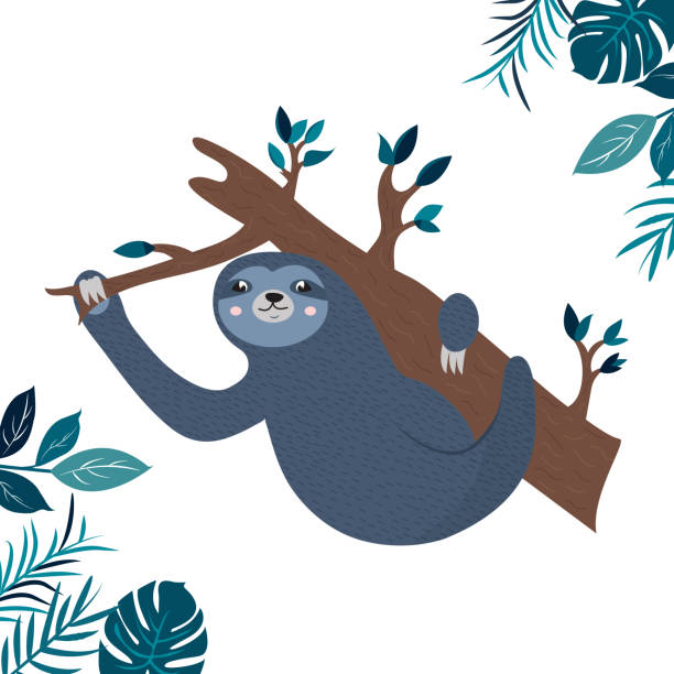 Illustration of a funny sloth hanging on the branch Illustration of a funny sloth hanging on the branch. baby sloth stock illustrations