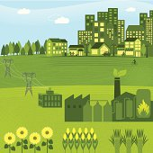 Bioenergy powering a city