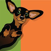 Illustration of a happy playful black and tan Dachshund on his back. Space for text. For posters, cards, banners.