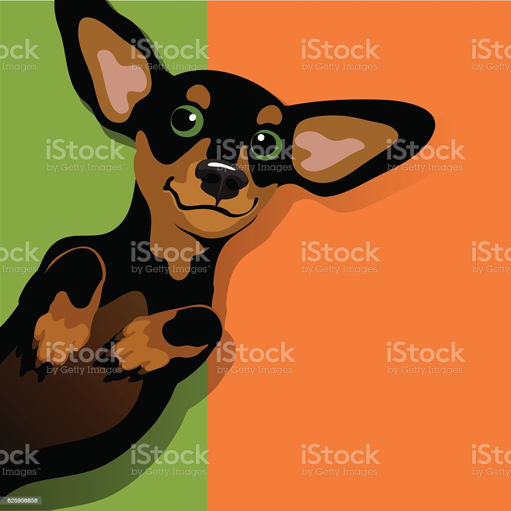 Illustration of a happy playful Dachshund vector art illustration