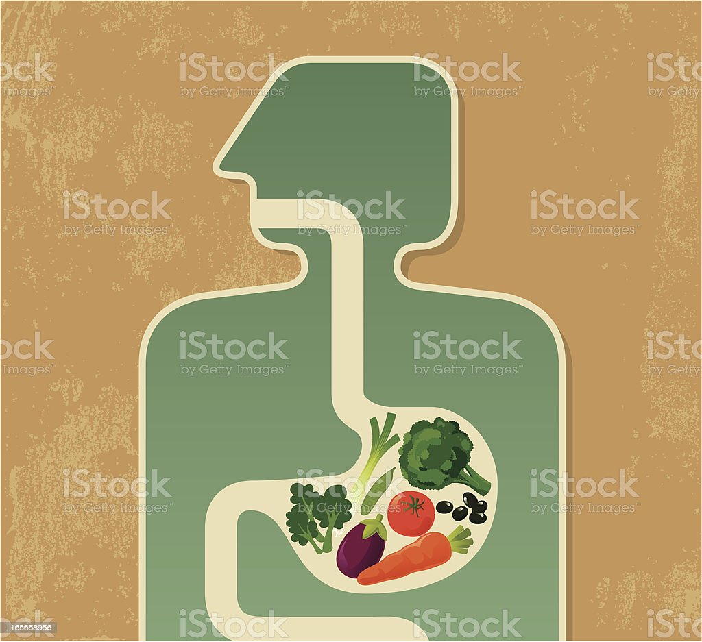 Illustration of a human digesting fruits and vegetables vector art illustration