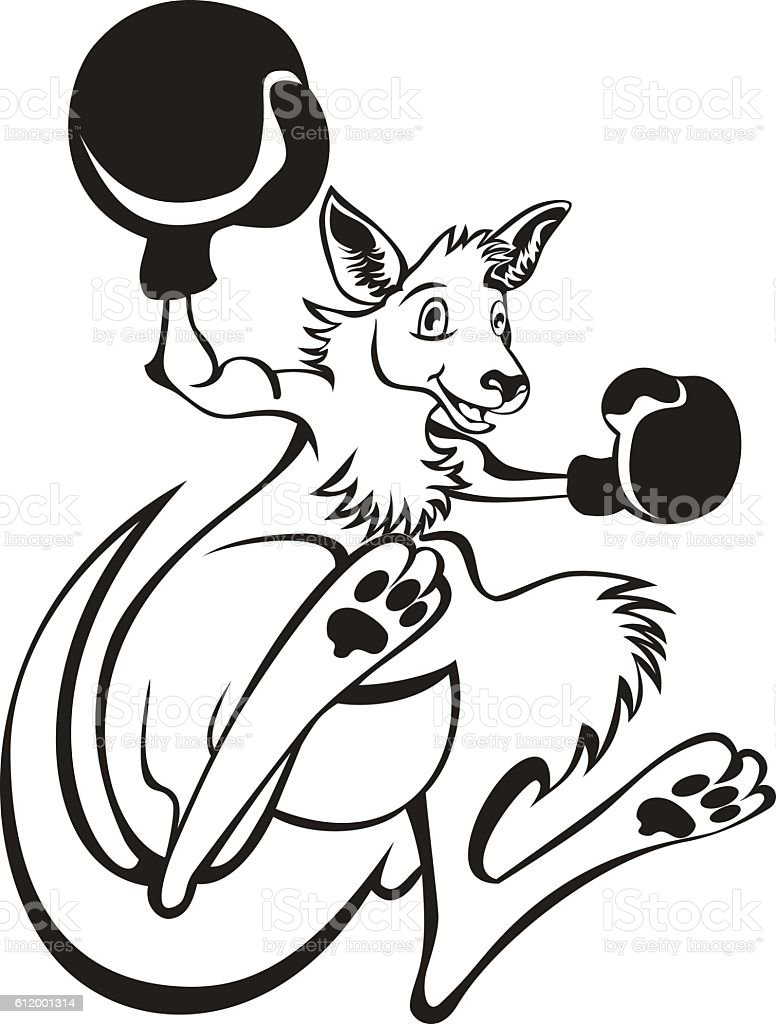 Illustration of a kangaroo kick boxer isolated background vector art illustration