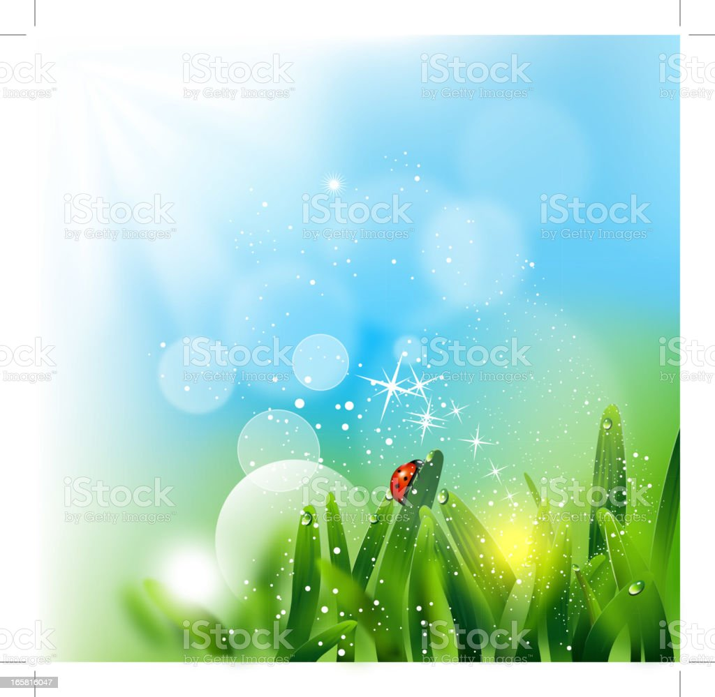 Illustration of a ladybug on grass with sparkling sunlight royalty-free stock vector art