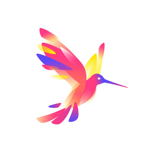 illustration of a pink colibri. vector illustration. image is isolated on white background. bird of hummingbirds. logo for the company, studio. talisman, emblem. a modern bird image. - hummingbird stock illustrations