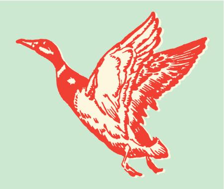 Illustration of a red duck in flight