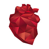 Illustration of a stylized human heart origami on white background