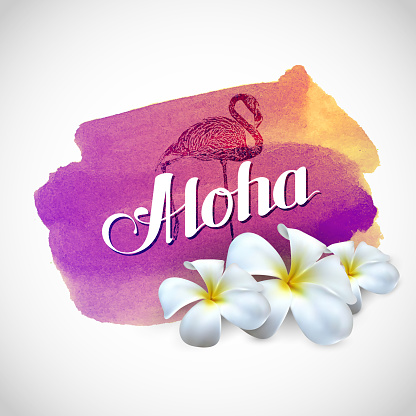 illustration of Aloha label with exotic frangipani flowers and