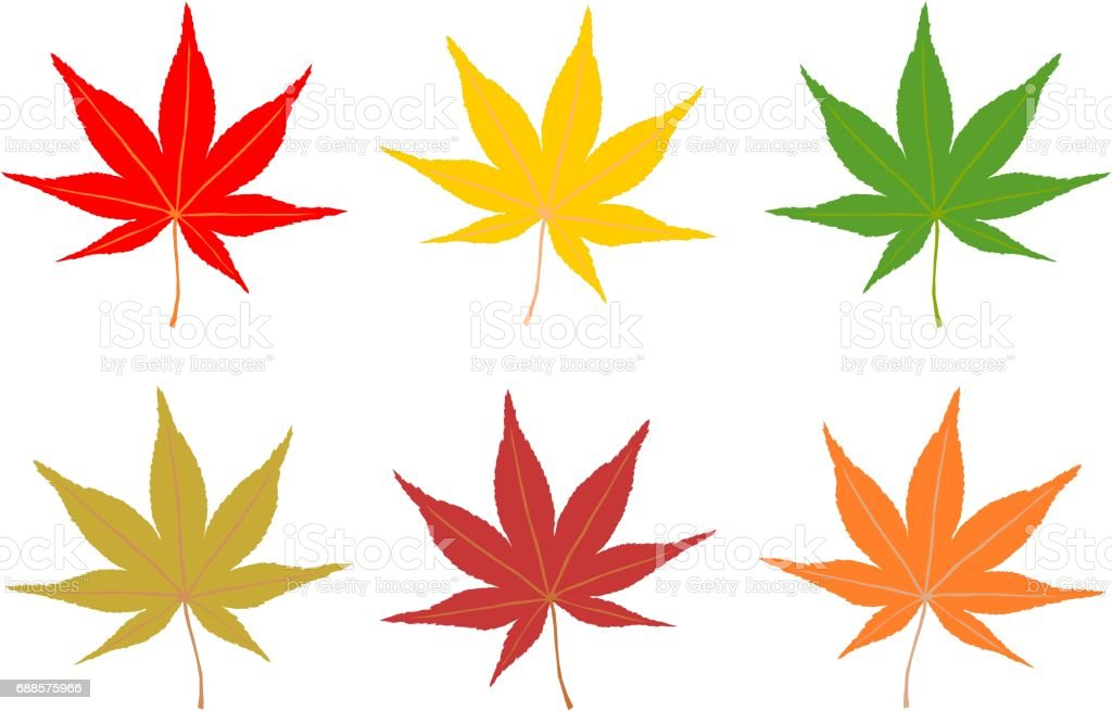 Illustration of Autumn leaves vector art illustration