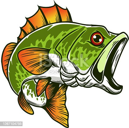 istock Illustration of bass fish. Big perch. Perch fishing. Design element for emblem, sign, poster, card, banner. Vector illustration 1267104755