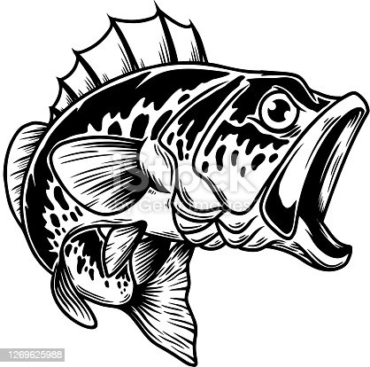istock Illustration of bass fish. Big perch. Perch fishing. Design element for emblem, sign, poster, card, banner. Vector illustration 1269625988