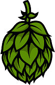 istock illustration of beer hop in engraving style. Design element for poster, label, sign, emblem, menu. Vector illustration 1217337132