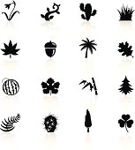 Illustration of different Botanic related objects and symbols.