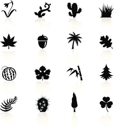 Illustration Of Black Botanic Symbols Stock Illustration - Download Image Now