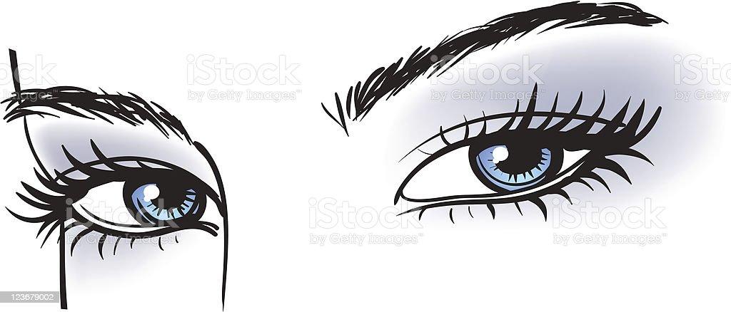 illustration of blue eyes with long eyelashes stock vector art