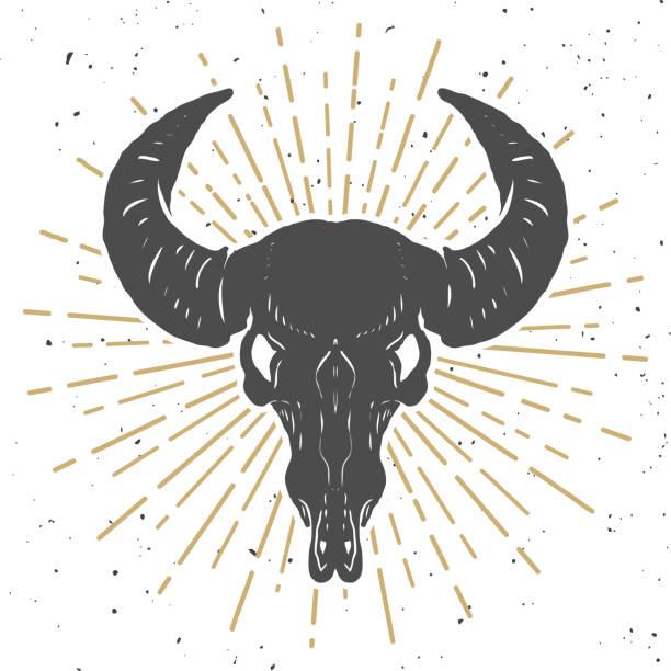 illustration of buffalo skull isolated on white background. design element for poster, emblem, sign, t-shirt. vector illustration - animal skull stock illustrations
