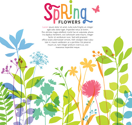 Illustration of colorful spring flowers and stems