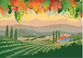 Vineyards in Tuscany in early morning with hills, mountains and farmhouse with grape leaves and bunches of grapes in the foreground. Vineyard is complete under silhouette at front. Art in groups and layers for easy editing.