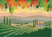 istock Illustration of colorful Tuscan vineyard landscape 153099147