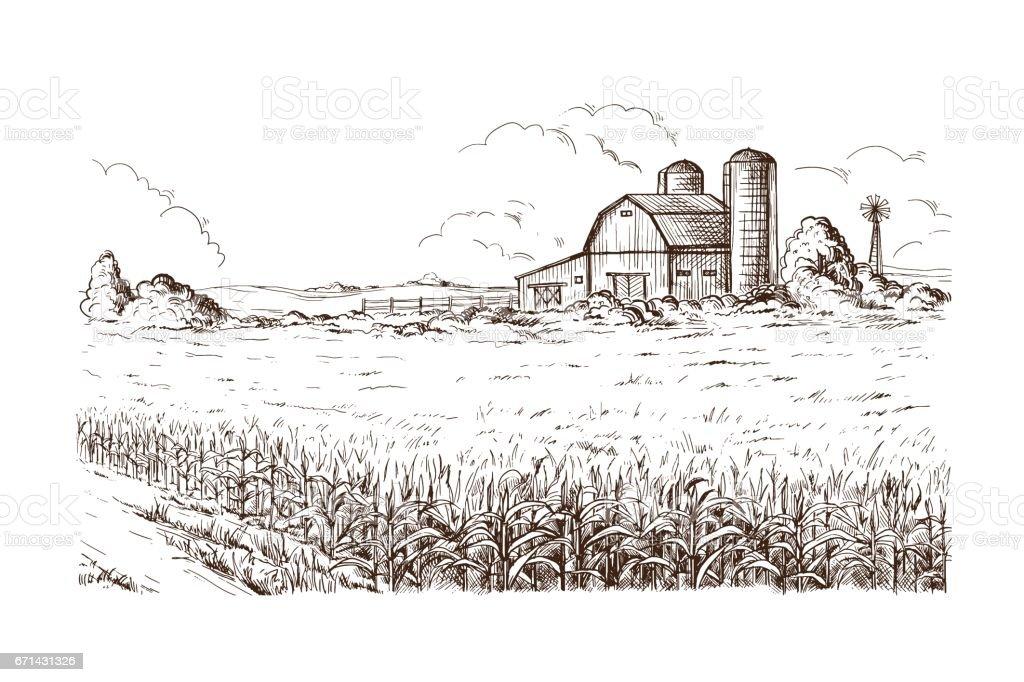 Außenillustration Kornfeld Korn Stiel Skizze – Vektorgrafik