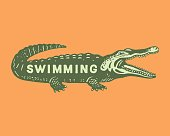 istock Illustration of crocodile with Swimming text written on it 1328205926