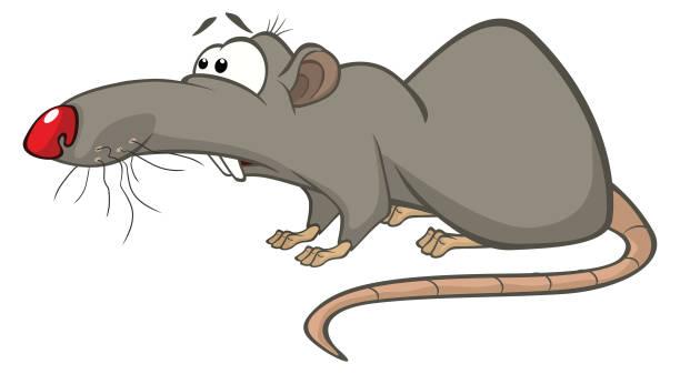 Caricaturas De Ratones Vectores Libres De Derechos Istock