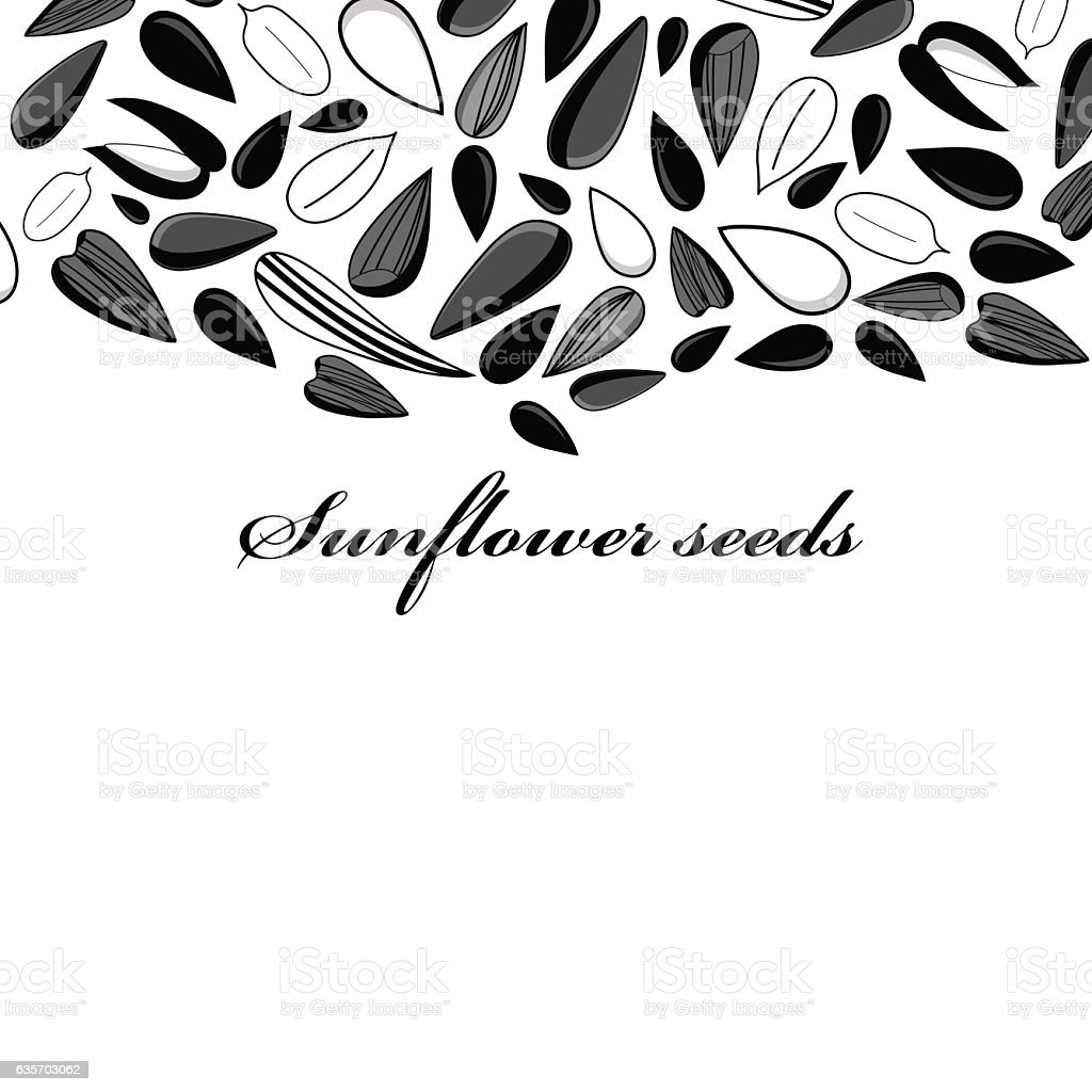 Illustration of different black seeds royalty-free illustration of different black seeds stock vector art & more images of agriculture