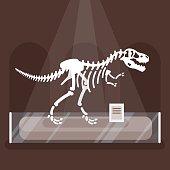 illustration of dinosaur skeleton in museum.