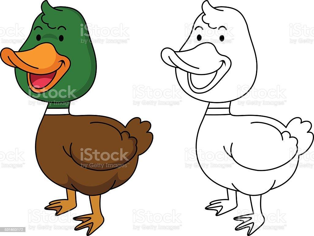 Ilustración De Educación Libro Para Colorear De Pato - Arte ...