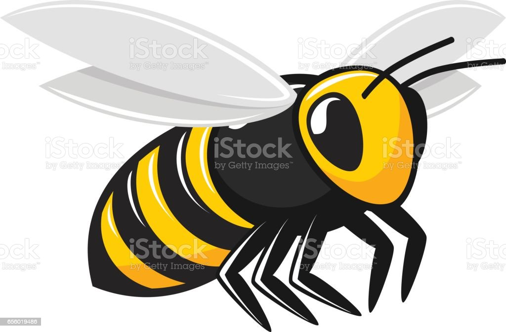 Illustration of flying bee. vector art illustration