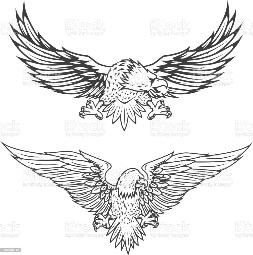 Ilustración del águila volando - ilustración de arte vectorial