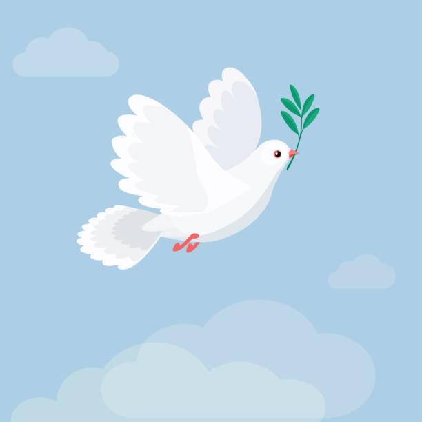 Illustration of flying white dove holding olive branch. Flat style Vector illustration of flying white dove holding olive branch. International Day of Peace. Flat style pigeon stock illustrations