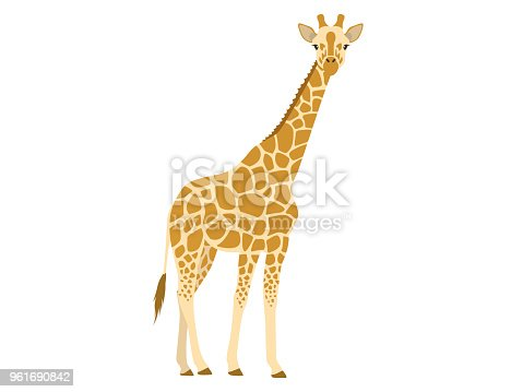 Illustration of giraffe.
