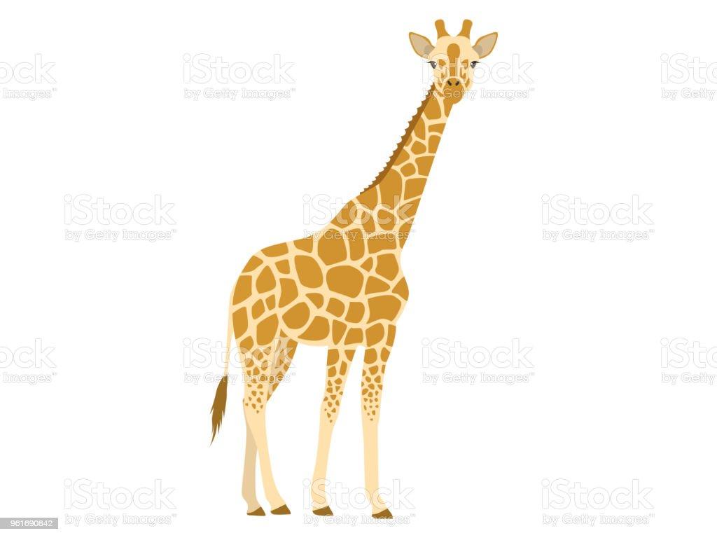 Giraffe Drinking Water Clip Art