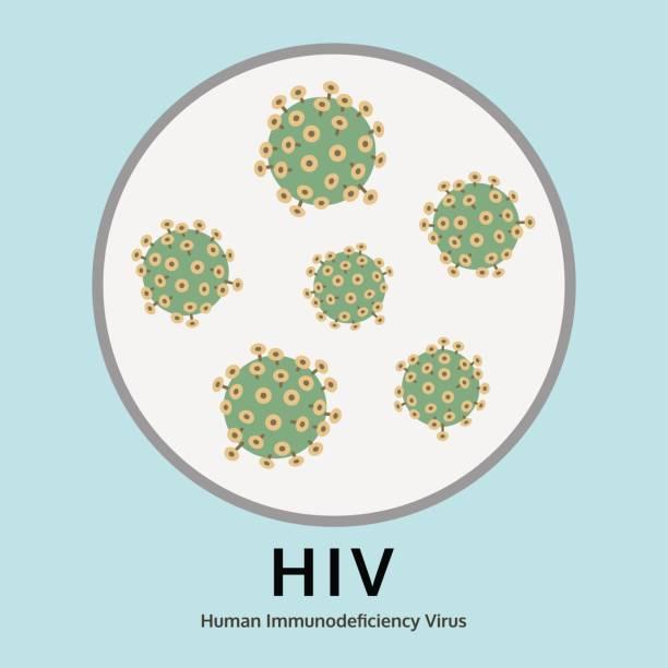 ilustrações, clipart, desenhos animados e ícones de ilustração de doença do vírus vih na bandeja do julgamento, vetor gráfico de informação médica - hiv