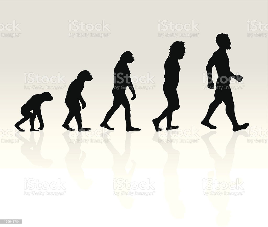Illustration of Human Evolution royalty-free stock vector art