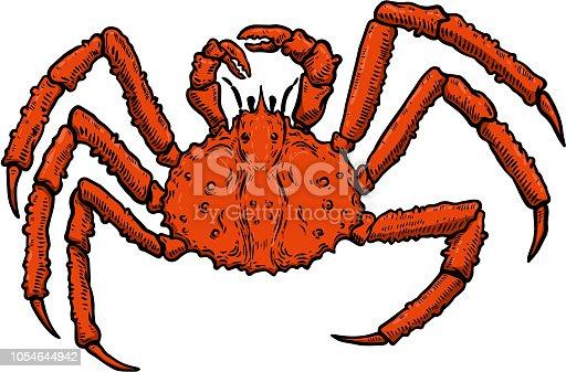 Illustration of King Crab isolated on white background. Design element for  label, emblem, sign, poster, menu, t shirt. Vector image