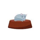 Illustration of kitten sleeping on basket. Gray cat in a cozy basket. Flat cartoon vector illustration on white background.