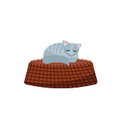 Illustration of kitten sleeping on basket. Gray cat in a cozy basket. Flat cartoon vector illustration on white background.