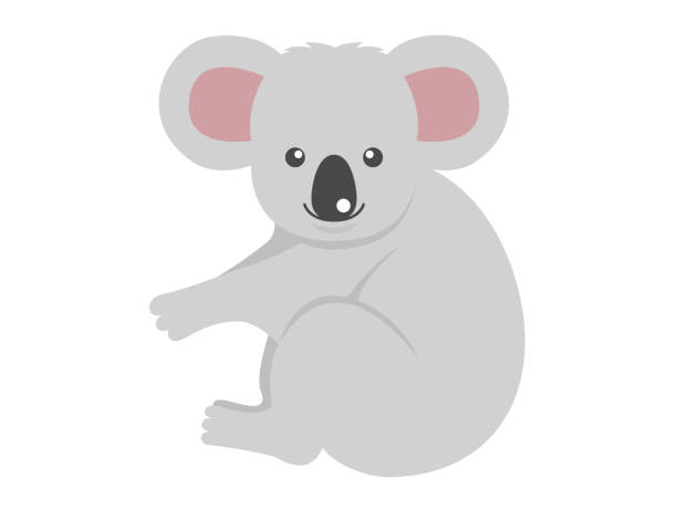 illustration of koalas. - koala stock illustrations