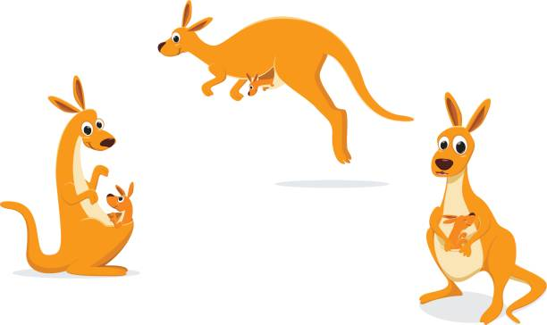 illustration of Mother kangaroo with her baby vector illustration of Mother kangaroo with her baby kangaroo stock illustrations