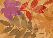 A leafy background image.