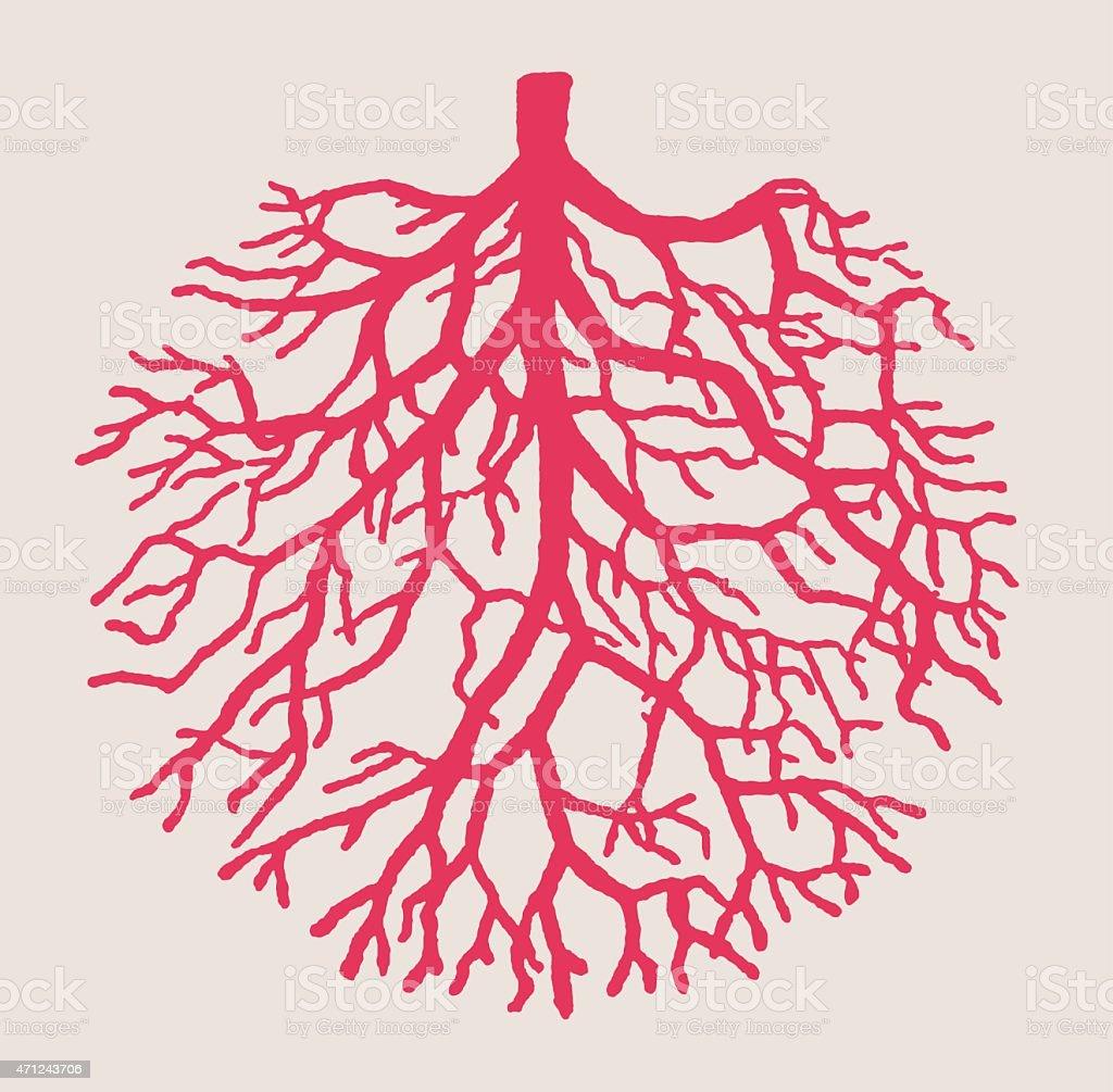 Illustration of pink tree roots making upsidedown tree shape vector art illustration