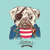 Illustration of pirate pug dog on blue background in vectorIllustration of pirate pug dog on blue background in vector