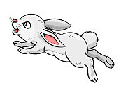 Illustration of Rabbit - Vector Illustration