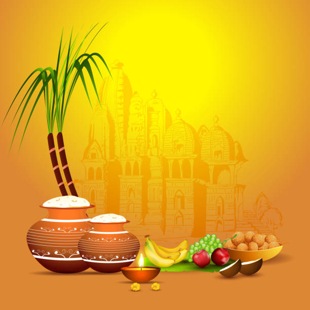 Illustration of rice mud pot with sugarcane, fruit, illuminated oil lamp (Diya) and Indian sweet (Laddu) on yellow temple background for Happy Pongal celebration. vector art illustration