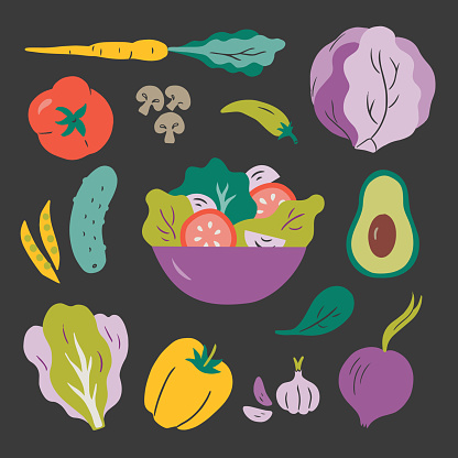 Illustration of salad and fresh ingredients — hand-drawn vector elements