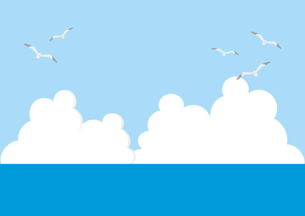 illustration of sea, sky, clouds and seagull flying. vector art illustration