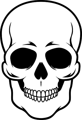 Illustration of skull. Design element for emblem, sign, poster, card, banner. Vector illustration